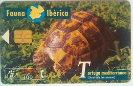 2000 Peseta Spanish Turtle - Schede Telefoniche