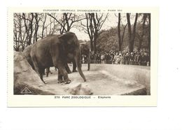 CPSM Elephant  Exposition Coloniale 1931 Parc Zoo TB 2 Scans - Exhibitions
