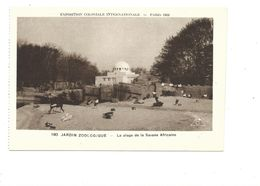 CPSM Savane Africaine  Exposition Coloniale 1931 Parc Zoo TB 2 Scans - Exhibitions