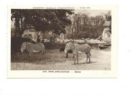 CPSM Zebres Exposition Coloniale 1931 Parc Zoo TB 2 Scans - Exhibitions