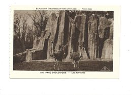 CPSM Autruches Exposition Coloniale 1931 Parc Zoo TB 2 Scans - Exhibitions