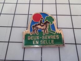 1619 Pin's Pins / Beau Et Rare / THEME : ANIMAUX / CHEVAL EQUITATION DEUX-SEVRES EN SELLE - Animales