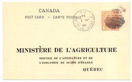 Canada Entier De Service Ministere De L Agriculture Service De Apiculture Inspection Des Ruchers Abeilles - Api