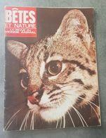Bêtes Et Nature N°59 En Dessin Animée Le Livre De La Jungle - Agoutis - Un Blaireau D'Indonésie...  De 1968 - Nature