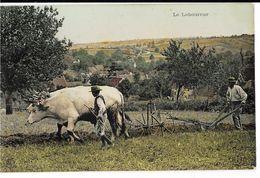 Le Laboureur, Cp Glacée Colorisée (2 Boeufs Attelés Tirant Charrue), Envoi 1907 - Equipos