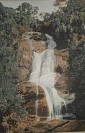 Brésil. Tijuca. Petite Cascade. Photogravure Fin XIXe. - Prints & Engravings
