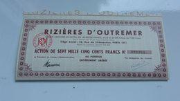 RIZIERES D'OUTREMER - Acciones & Títulos