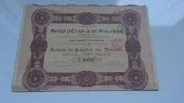 MINES D'ETAIN & DE WOLFRAM (1899) - Acciones & Títulos