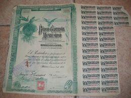 1 Action Banco Central Mexicano   Mexicain Mexique Mexico Acciones Serie A - Banco & Caja De Ahorros