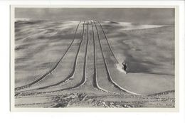 25596 - Traces De Skis Le Skieur Photograph J Gaberell Thalwil - Winter Sports
