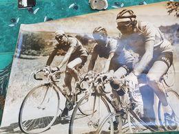Photos Originales Tour De France Cycliste 1952 Photos De Presse Grand Format - Cycling