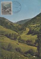 Carte  Maximum  ANDORRE   Prairies  D' AYNOS   1964 - Andorra Española