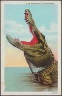 I Am Yawning For You In Panama, C.1940 - Maduro Postcard - Panamá