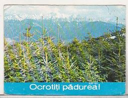 Romania Old 1980 Small Calendar - Calendars