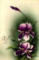 > Fleurs   IRIS  / PEINTE /////  10 - Flowers