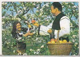 Romania Small Calendar - 1978 - CLF - Calendars