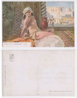 Giandrone - Arabe, Galerie D'art, Femme Nu Arabe, Illustree, Arabic Woman Nacked, Art, Signee - Peintures & Tableaux