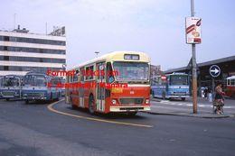 Reproduction D'une Photographie De Plusieurs Bus à Un Arrêt à Venise En Italie En 1976 - Reproducciones