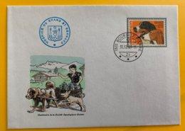10363 -  Suisse Enveloppe Timbre Bouvier Bernois  Oblitération Bourg-St-Pierre 31.12.1983 +  Hospice Grand St-Bernard - Hunde