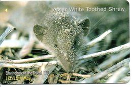 Animal Lesser White Toothed Shrew Télécarte Jersey Phonecard Telefonkarte (G 254) - Schede Telefoniche