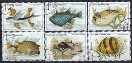 S.TOME&PRINCIPE 1979 -  MiNr. 612-617 Komplett   Used - Fishes