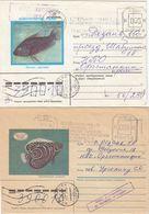 UDSSR 1988 -  MiNr. 2 Belege - Fishes