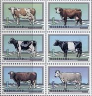 Netherlands  2012. Farm Animals. Breeds Of Cows. Fauna.   MNH** - Unused Stamps