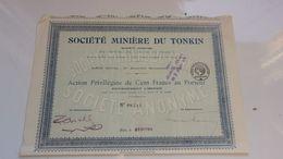 MINIERE DU TONKIN (action Privilégiée 100 Francs) - Acciones & Títulos