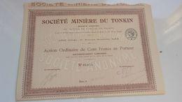 MINIERE DU TONKIN (action Ordinaire De 100 Francs) - Acciones & Títulos
