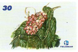Animal Oiseau Vogel  Télécarte Brésil Phonecard Telefonkarte (G 263) - Uccelli