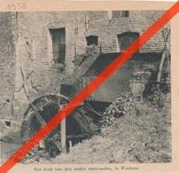 WESTREM - OUDE WATERMOLEN  - 1938 - Tijdschriftafbeeldingen - Vecchi Documenti