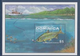 Bloc 1 Timbre Neuf Dentelé Commonwealth Dominica, Le Tarpon Est Un Poisson Des Mers Chaudes - Fishes