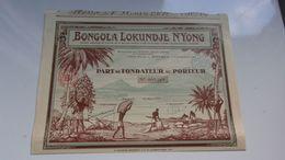 BONGOLA LOKUNDEJE N'YONG (douala , Cameroun - Shareholdings
