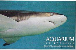 Aquarium La Rochelle - Tickets - Vouchers