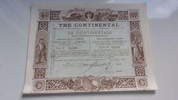 THE CONTINENTAL (la Continentale)minière Et Métallurgique 1890 - Shareholdings
