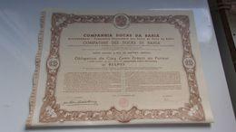 DOCKS DE BAHIA (rio De Janeiro BRESIL) - Shareholdings