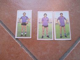Figurine PANINI Modena Calciatori N.3 Differenti FIORENTINA Edizione 1970 1971 - Panini