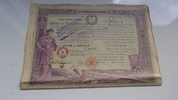 MINES DE BALIA KARAIDIN (1904) - Shareholdings