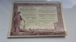MINES DE BALIA KARAIDIN (1924) - Shareholdings