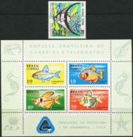 BRAZIL 1969 Fish Fishes Animals Fauna MNH - Fishes