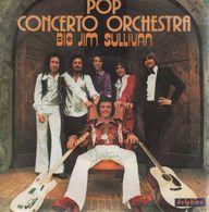 Disque 45 Tours POP CONCERTO ORCHESTRA 1976 Delphine 64.018 - Vinyl Records