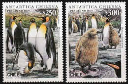 1996 Chile King Penguin Set And Minisheet (** / MNH / UMM) - Pingouins & Manchots