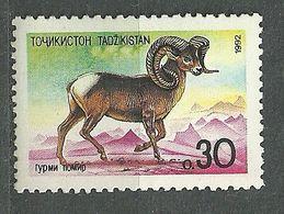 Tajikistan, 1992 (#4a), Asian Fauna, Animals, Mammals, Sheep, Argali, Tiere, Animali, Animaux, Animais - 1v - Timbres