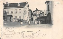 CIREY-SUR-VEZOUZE-Lunéville-Blamont (54-Meurthe Et Moselle) Entrée Brasserie-Bière-Alcool-Usine-Industrie-2 SCANS - Cirey Sur Vezouze