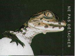 Aquarium De Touraine - Tickets - Vouchers