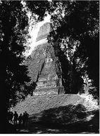 Photo Guatemala Grand Temple Maya Site De Tikal, Dans Le Petén Ph. Vivant Univers 2000 . - Lugares