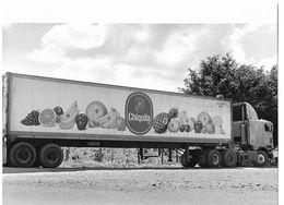 Photo Guatemala Région D'Esquipulas, Un Des Camions 'frigo' Américains Emportant La Production Ph. Vivant Univers 2000 . - Lugares