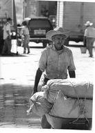 Photo Guatemala . Petit Paysan Apporte Sa Production De Café Dans Sa Brouette.Ph. Vivant Univers 2000 . - Lugares