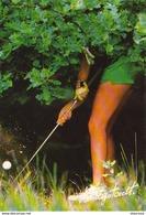 THE BEST OF VANDYSTADT ........... GOLF  Tenue Camouflée   .......... Photo Steve Powell - Golf