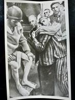 PHOTO Presse ORIGINALE WW2 WWII : HOLOCAUST _ Camp De MAUTHAUSEN _ LIBERATION Mai 1945 - Krieg, Militär